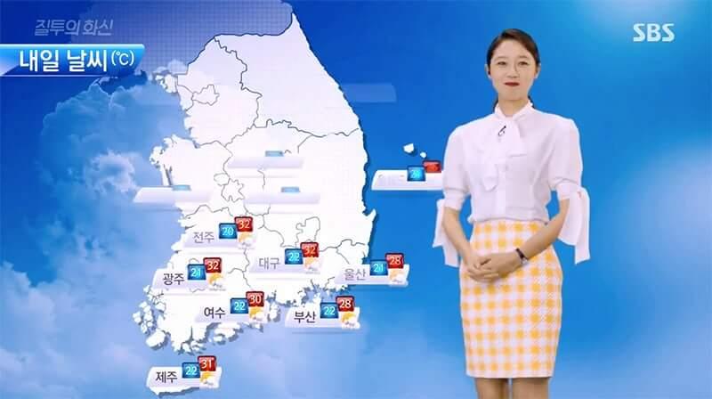 profesi di drama korea