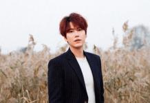 idol Kpop kaya