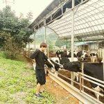 bts farm