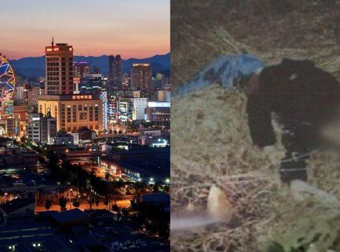 kota paling berbahaya di korea selatan