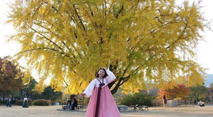 libur tahunan di Korea