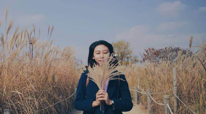 spot di Korea Selatan yang instagramable